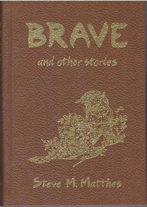 BRAVE AND OTHER STORIES. Steve M. Matthes.