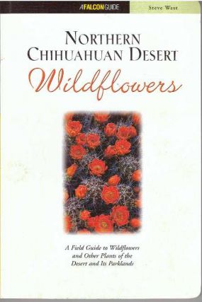 NORTHERN CHIHUAHUAN DESERT WILDFLOWERS. Steve West