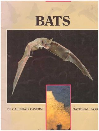 BATS OF CARLSBAD CAVERNS NATIONAL PARK. Kenneth N. Geluso, J. Scott Altenbach, Ronal C. Kerbo